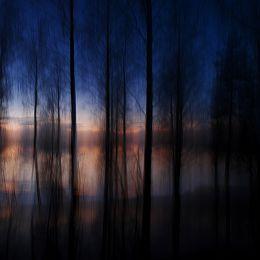 Fleeting Glimpse by Kristine Bergheim