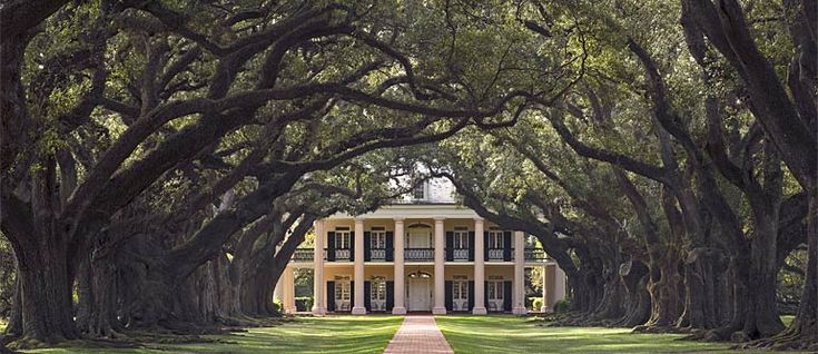 Oak Alley Plantation, Louisiana <3 One of the most beautiful places I've ever been