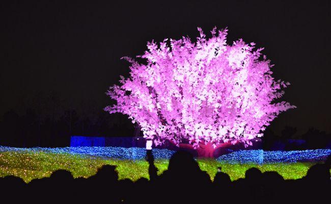 Arte em um túnel de luzes com milhões de lâmpadas    http://magicweb.me/bZn
