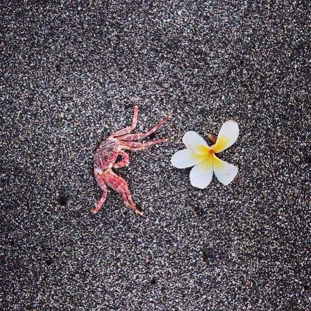 That Bali vibe. - #bali#blacksand#exotic#travel