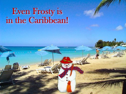 Make your friends & family smile with these #Barbados Christmas ecards :)