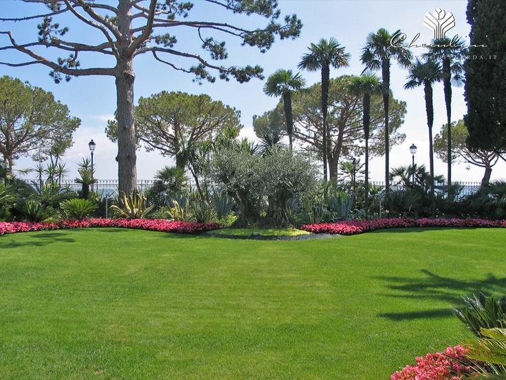 Copyright © www.vivaiodelgarda.it  Piacere Esotico - All'ombra delle Palme