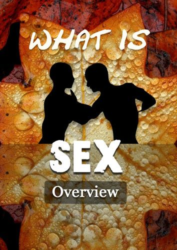 SEX - it is always on our minds and part of our society in every way. A silent participant in everything we think and do.     Understanding Sex in all its multidimensions will empower you to truly discover the wonder of Life.     Enjoy!