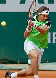 Fourth seed and last year's semi-finalist David Ferrer defeated fellow Spaniard Albert Montanes at Roland Garros on Wednesday.