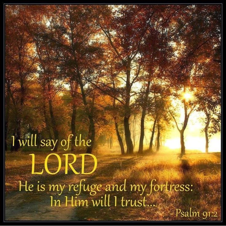 Psalms 91:2 I Will Acknowledge The Lord As My Only Savior! (