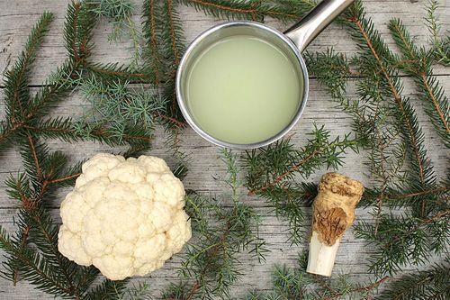 Experimentování s (nejedovatým) jehličím - to je moderní severská kuchyně, kterou pěkně přiblížil pan Cuketka v receptu Květák na jalovci a smrku se syrovátkou (http://www.cuketka.cz/?p=7877). Jen ten květák moc typickou zimní zeleninou rozhodně není. Ale jít si před obědem do zahrady pro pár smrkových větviček do jídla, to zní rozhodně zajímavě. (Jehličí v kuchyni je blízké i naší tradici, například nakládání zvěřiny do jedlového chvojí.)