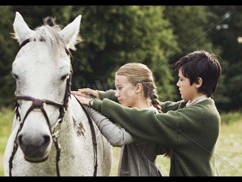 Фильмы о лошадях. Освобождение  (1995)