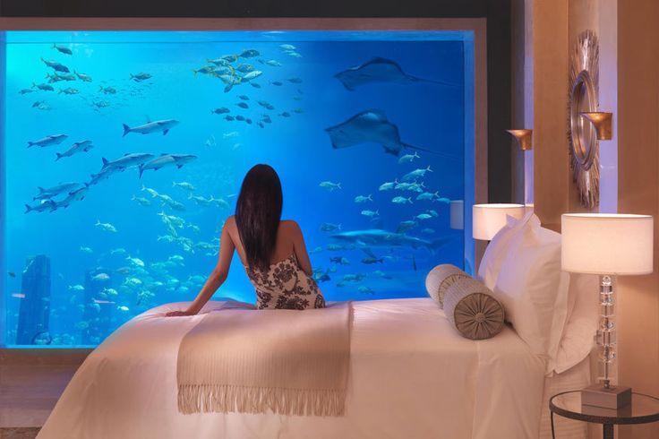 Von Florida bis Fidschi: Die 7 schönsten Unterwasser-Hotels der Welt   travelbook