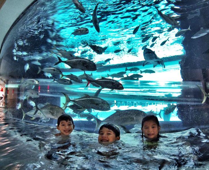 53 Best Las Vegas Pool Images On Pinterest