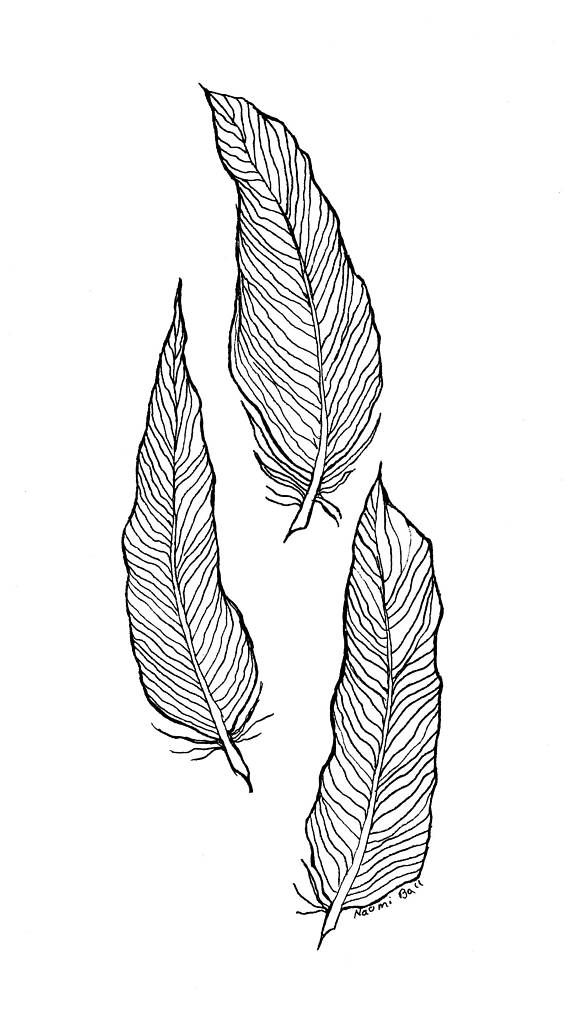 Printable Wall Art Download 3 Feathers Sketch