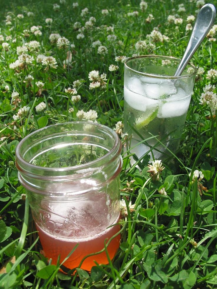 Rhubarb Rose Cocktails | Rose cocktails | Pinterest