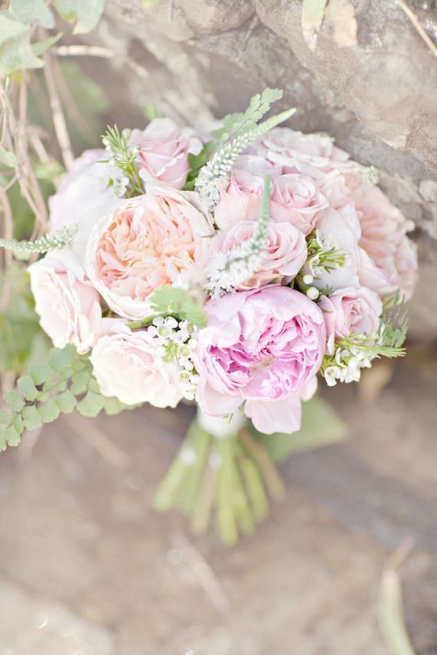 beautiful peony options cabbage roses dahlias sweet juliet roses and carnations all feature