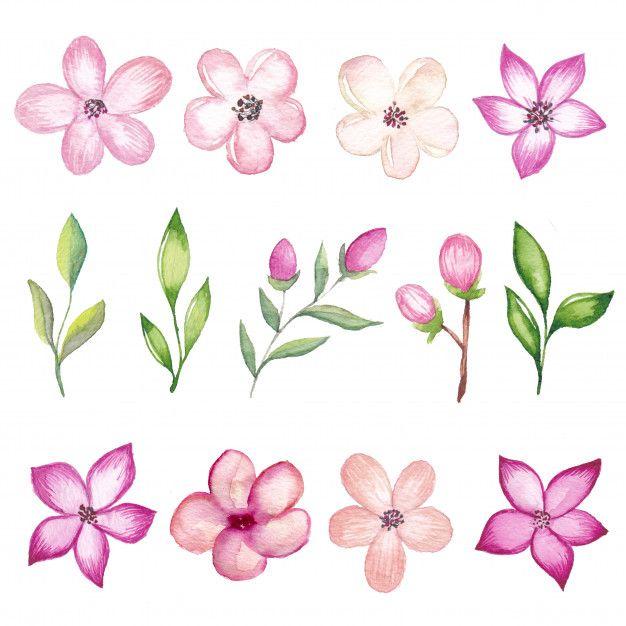Acuarela Flor De Cerezo Ramas Y Flores V Premium Vector Freepik Vector Fondo Flor De Cerezo Ramas De Cerezo Arbol De Cerezo Dibujo