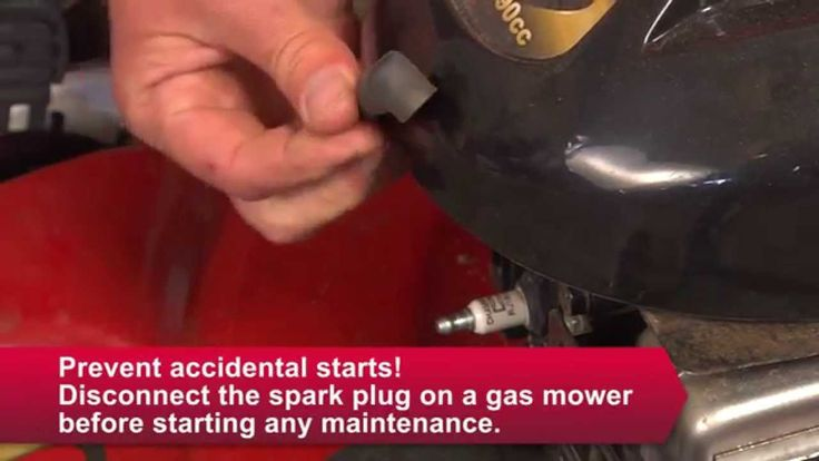 How to Tune Up Your Lawn Mower - Ace Hardware