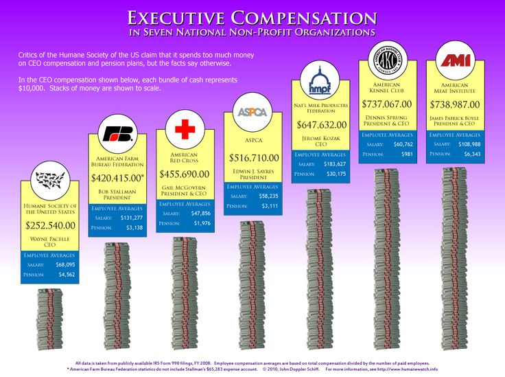 Executive Compensation In Seven National Non Profit Organisations - profit & loss template free
