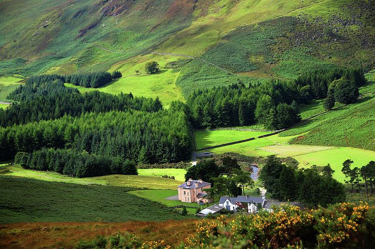 Emerald Valley. Wicklow. Ireland by Jenny Rainbow