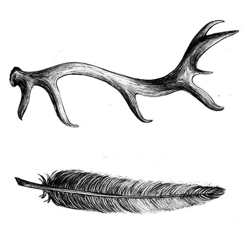 Bois de cerf et plume inspiration tatouage pinterest - Dessin bois de cerf ...