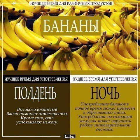 LIFE - познавательный журнал