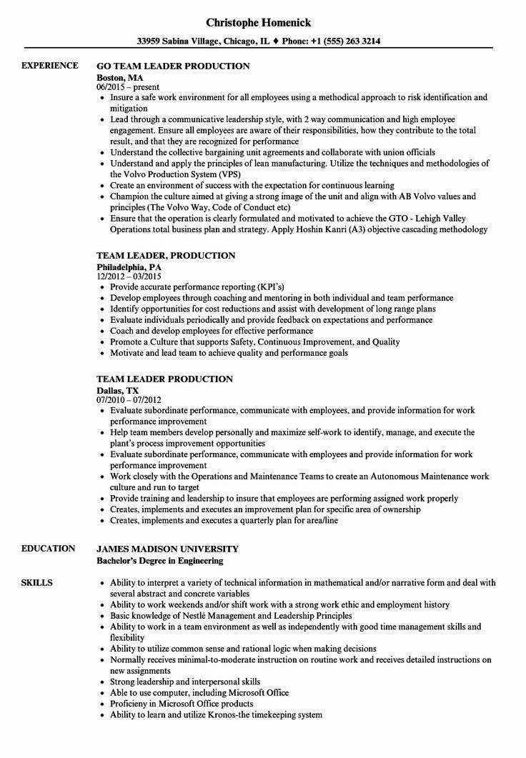 23 team lead job description resume in 2020 sales resume