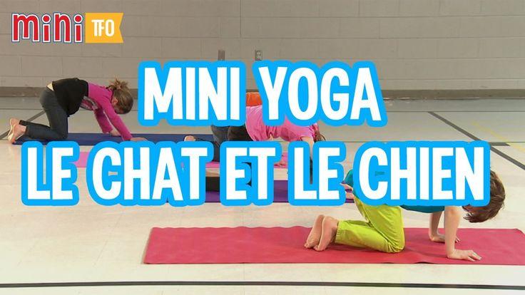 mini yoga le chat et le chien