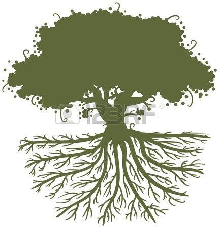 silueta de un árbol de roble con grandes raíces fuertes Foto de archivo