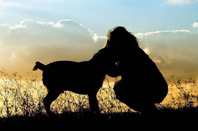 AnimalPlanet: Ode al cane, Pablo Neruda [Poesia]