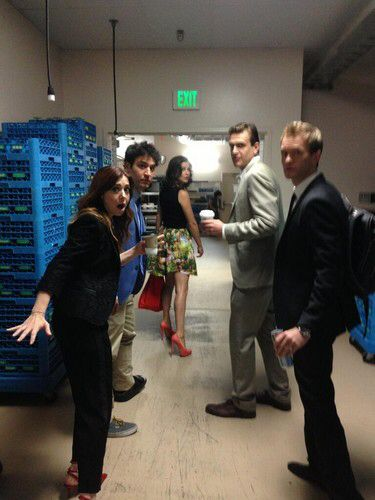 How I Met Your Mother cast Comic Con