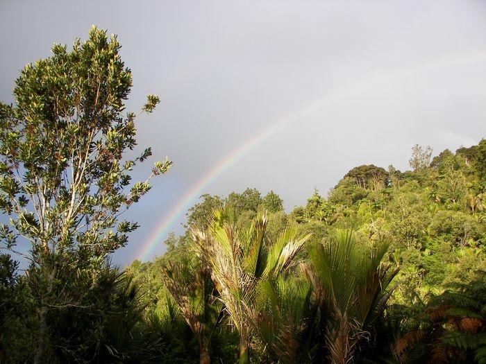 rainbow in our backyard
