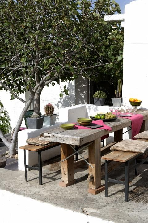 Stunning outdoor dining area. Love the wooden table and benches, the white rendered wall and the tree....oh I love that tree!