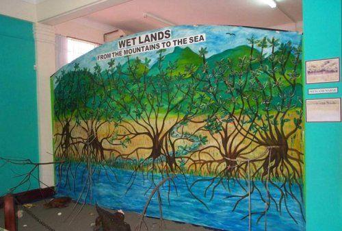 Ramsar Convention - World Wetlands Day