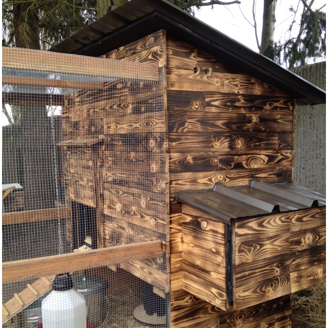 Our chicken coop. Burned the wood to give a great effect.Gardens Ideas, Burning Pine, Green Goddesses, Chicken Coops, Growing Ground, Design Interiors, Burning Wood, Beds Frames, House