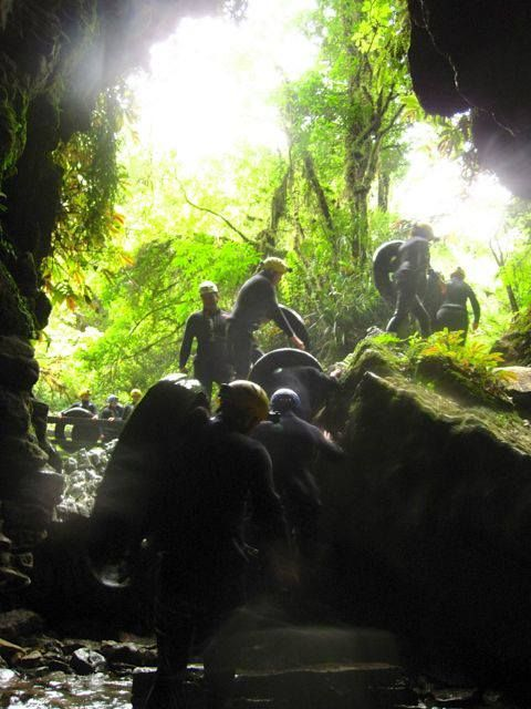 Waitomo GlowWorm Caves | New Zealand North Island