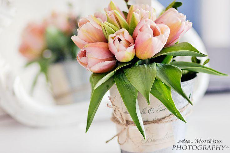 Tulipani rosa, un tocco di magia