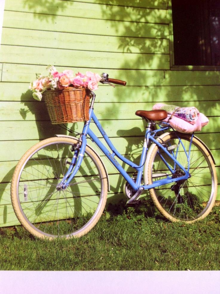 Selina's bike against my Summer house.