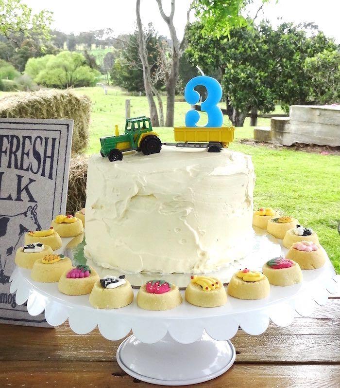 Cake With Mini Tarts From Farm Fresh Birthday Party At Karas Party