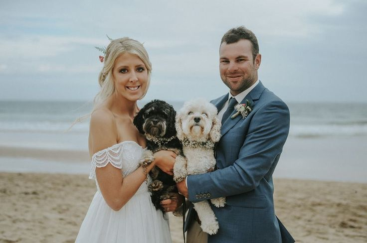 Babies Breathe flower crowns for the dogs. Flowers by asdaisydoes. Photography by Smitten Wedding Photography