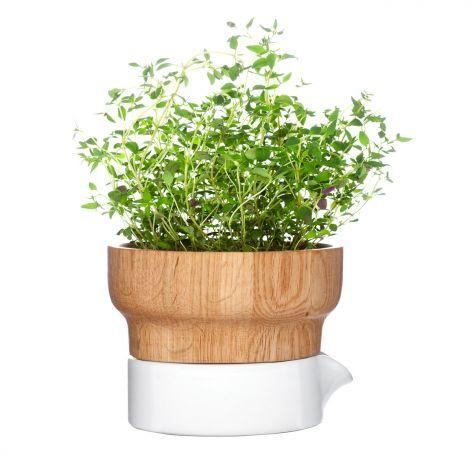 27 best produkt der woche images on pinterest products for Artvoll de