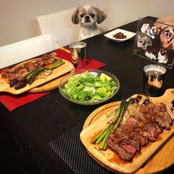 今夜の貴族の晩餐は恒例の素敵なステーキとレタスと味海苔のサラダをヤラカシたよ( ) ではでは( ω)( ω)かんぱーい #貴族の晩餐 #シーズー #愛犬まゆげ #またステーキ by mayuge0807