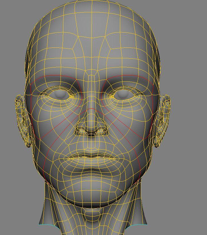 human head topology 4