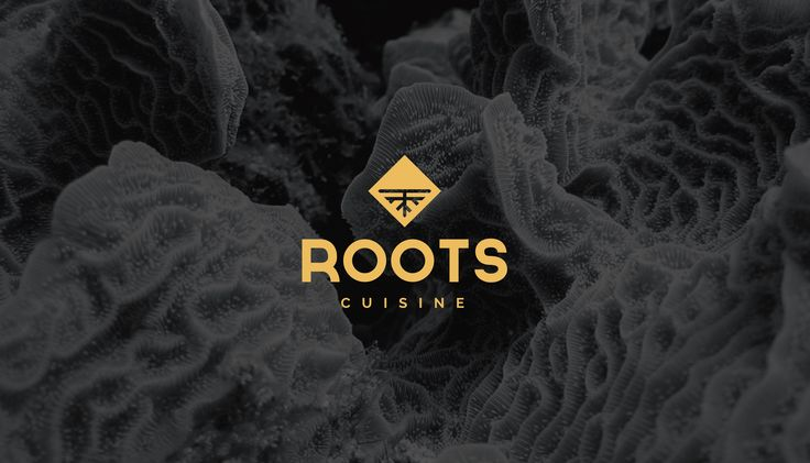 ROOTS CUISINE by Toni Bordoy