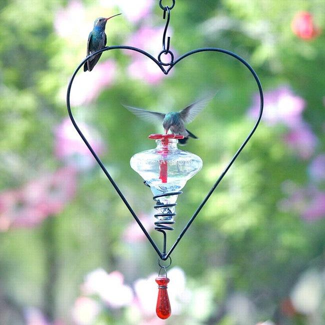 515c73c8710a4213c5bfe0f907350898 hummingbird nectar glass hummingbird feeders