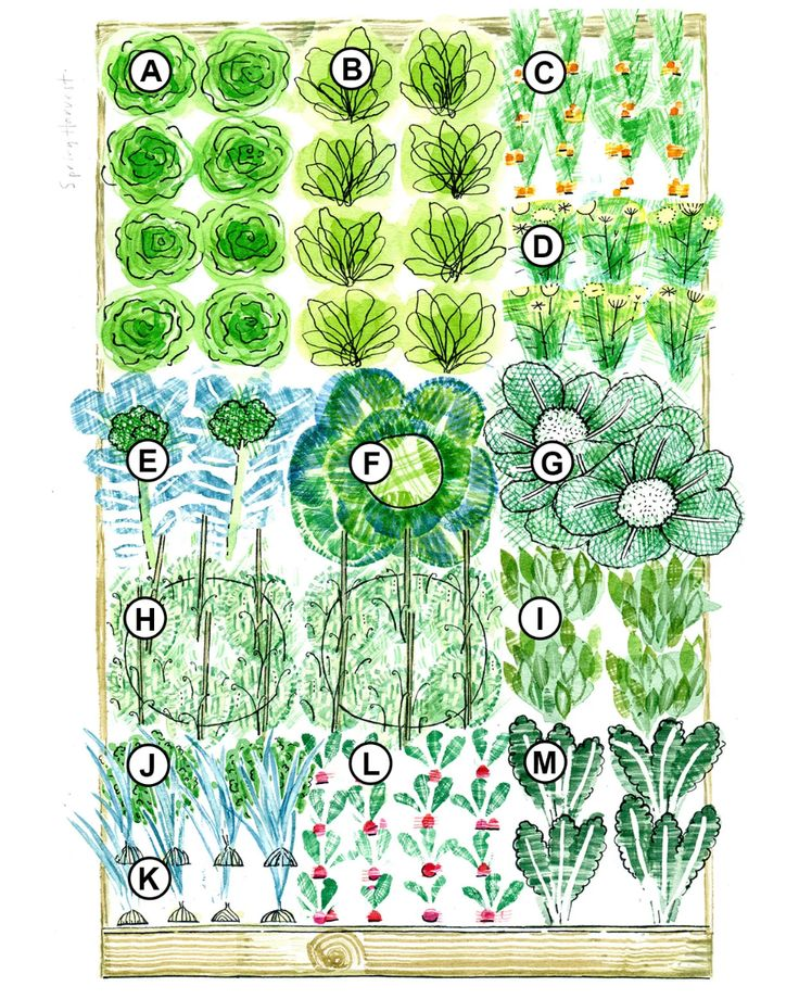 3 Season Raised-Bed Plan That Makes Vegetable Gardening ...