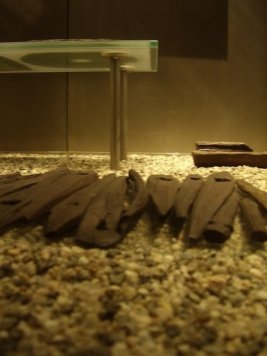 tent pegs from the Oseberg ship (Viking Ship Museum, Oslo)