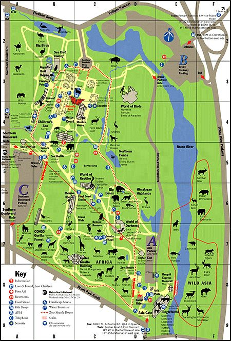 zoo coupons bronx zoo zoo animals the zoo map art 4th birthday zoos ...