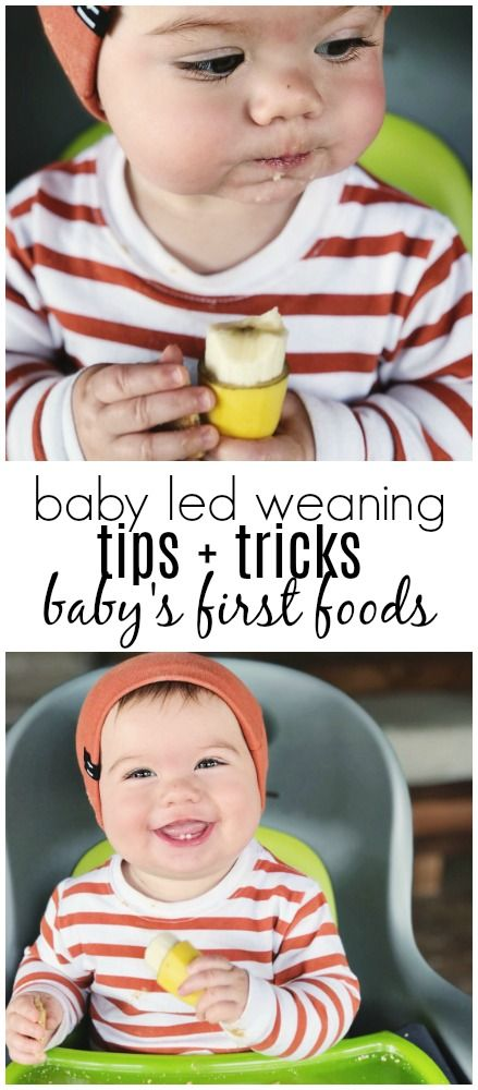 I've gotten a TON of questions about how I started Brady on solid foods, so it was definitely time for an update! when the twins were four months old our pediatrician mentioned at their well check that we could offer them baby cereal mixed with breast milk or formula. I hadn't done a ton of research about feeding feeding babies because, well, hello I had two at once and I was just trying to make it to the next day and keep them alive. so, I did what I assumed I was supposed to do and…