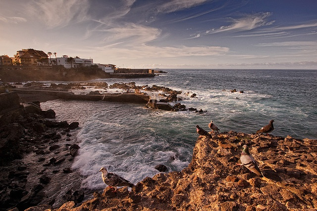 Puerto de la Cruz, Tenerife by szeke, via Flickr