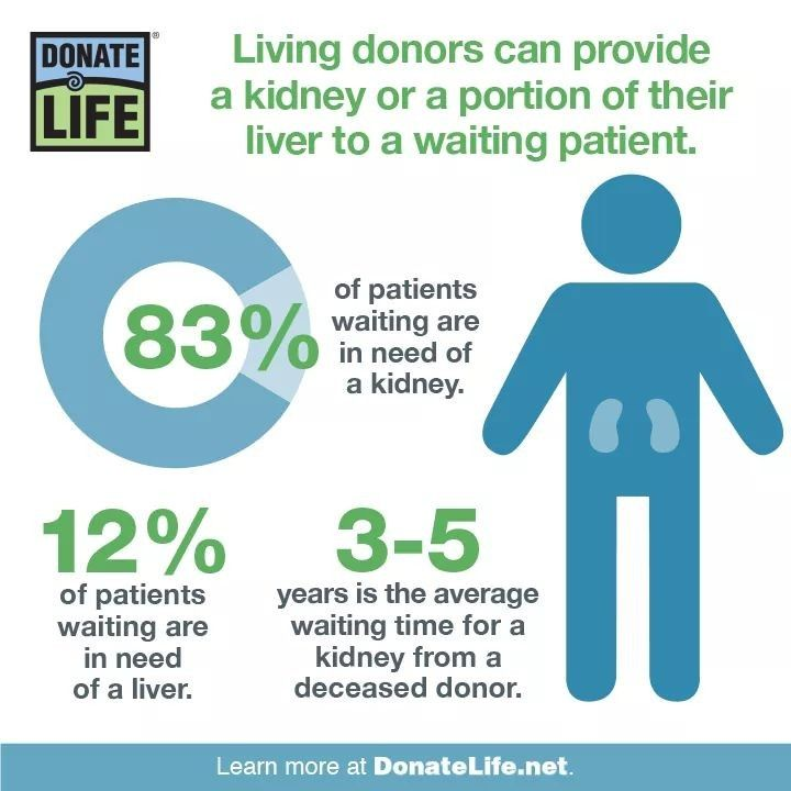 Pin by Lisa Iocona on Organ Donations | Donate life Organ ...