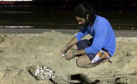Mais de 200 novas tartarugas nascem na Praia de Camburi