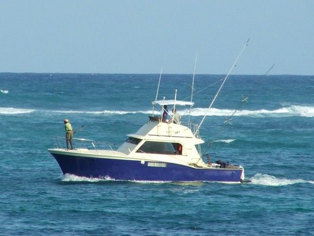 25 unique small fishing boats ideas on pinterest ocean for Small fishing boats for sale