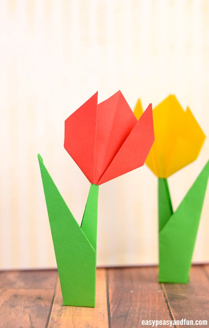 How to make a origami tulip.